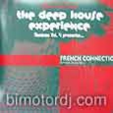 alan braxe & fred falke                                      - the deep house experience vol.4